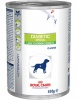 Royal Canin �������� ��� ����� ��� �������� ������� (Diabetic Special)