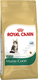 Royal Canin Kitten �aine Coon ��� ����� ����-���: 4-12���.
