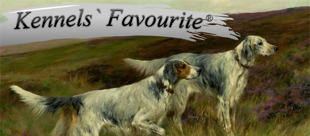 ������ 16% �� ���� �� ����� �� ����������� ����� Kennels Favourite