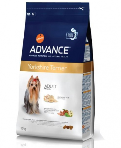 Advance Affinity Yorkshire Terrier (��� ����������� ��������)